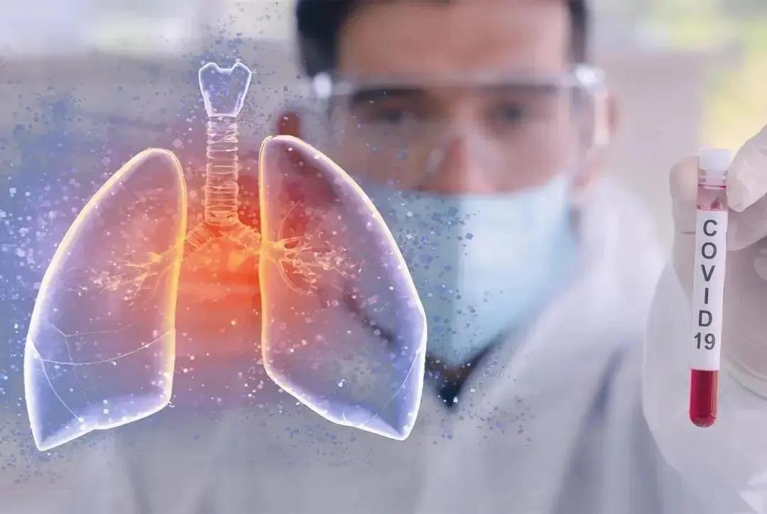 防疫非常时期,最有效的养肺方法你得知道!肺是人体的第一道防线!